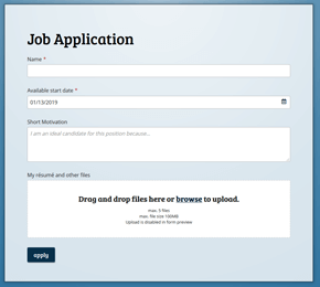 template for a job application form